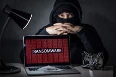 Исследование: образовательные сервисы страдают от атак вирусов-вымогателей