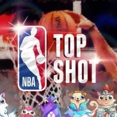 Разработчик CryptoKitties запускает закрытую бета-версию игры NBA Top Shot