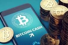 Santiment: количество «китов» Bitcoin Cash снизилось