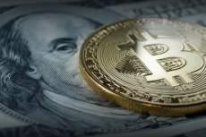 Опрос: большинство американцев выступает против запуска государственной криптовалюты